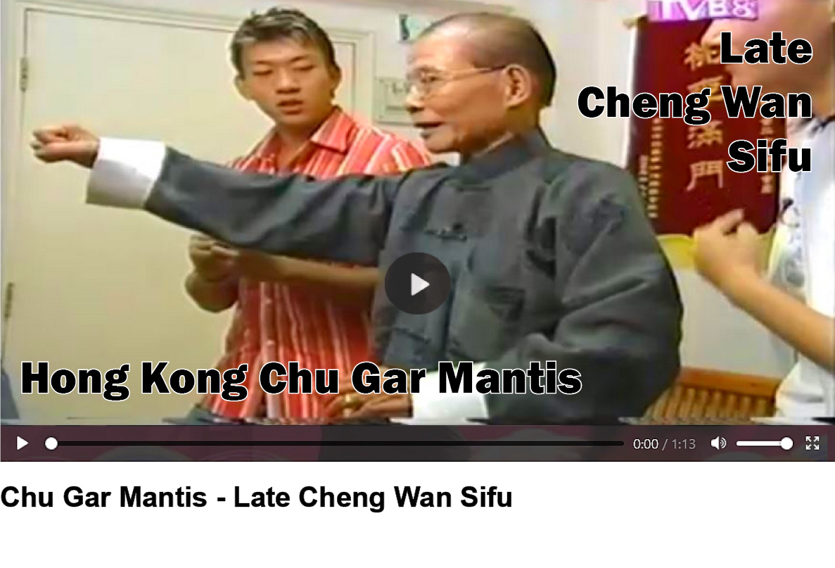 Hakka Southern Praying Mantis Kungfu